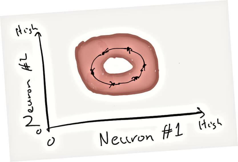 Созвездия из нейронов