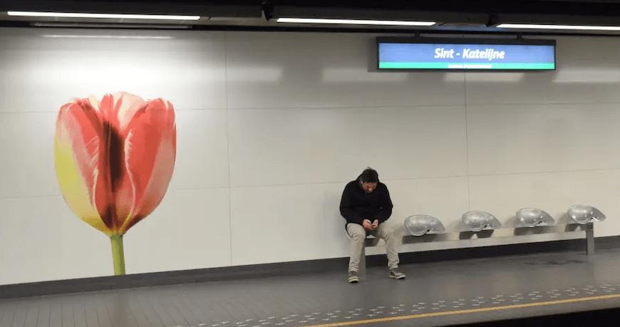 Мужчина в метро с тюльпанами